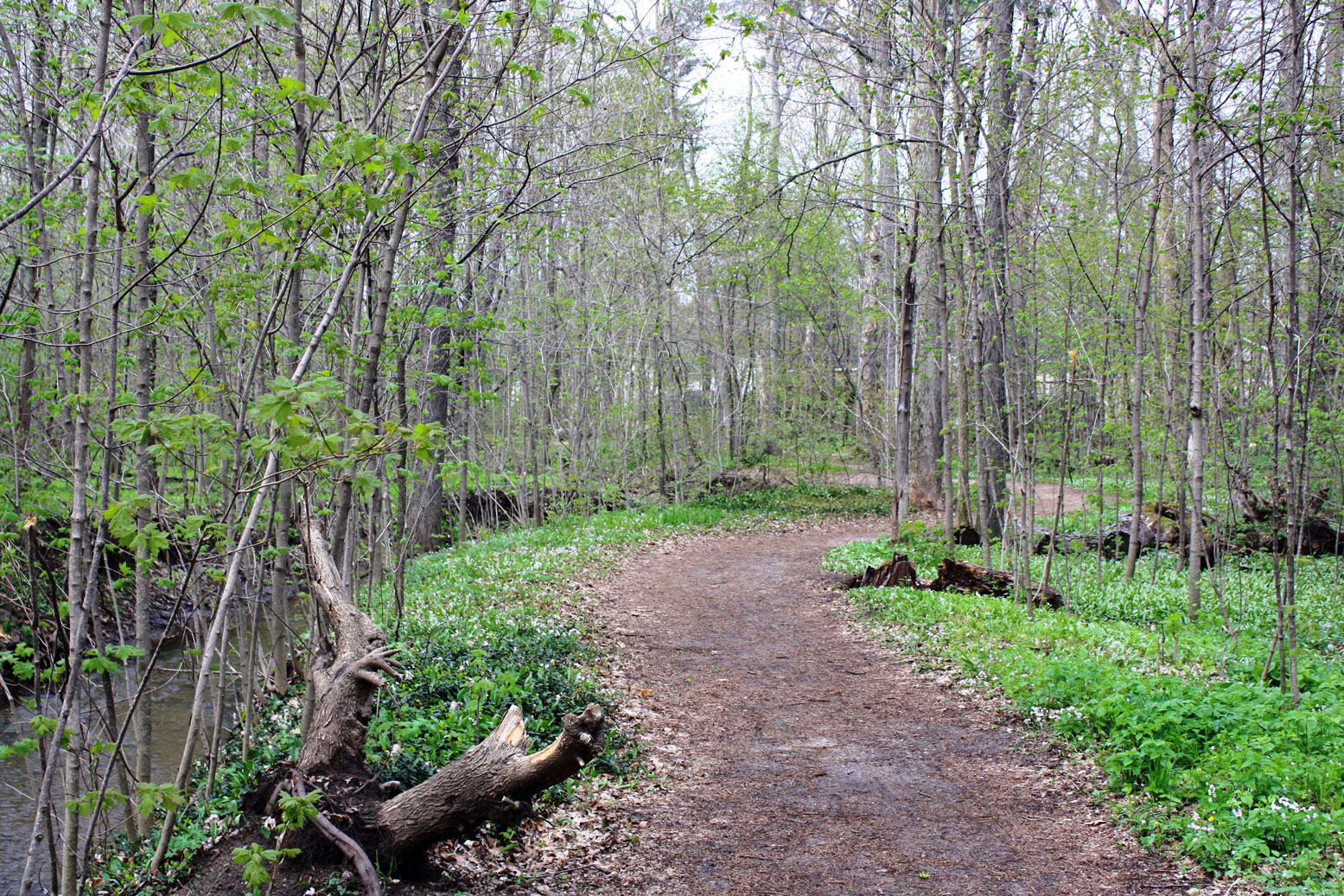 Hager-Park-Trail